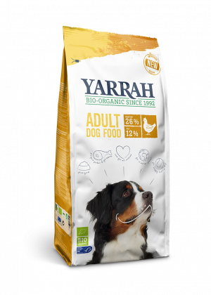 yarrah cão adulto frango
