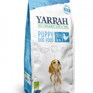 YARRAH_DOG_PUPPY-