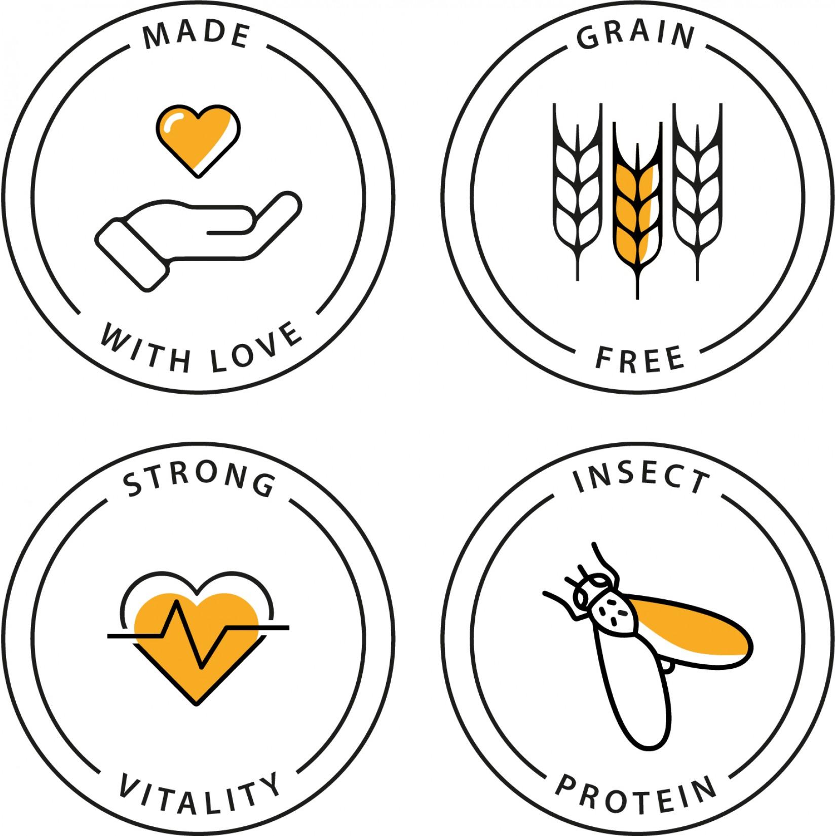 dry-insecto-certificados