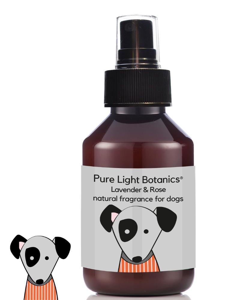 fragrância alfazema e rosas para cão orgânica, natural e saudável