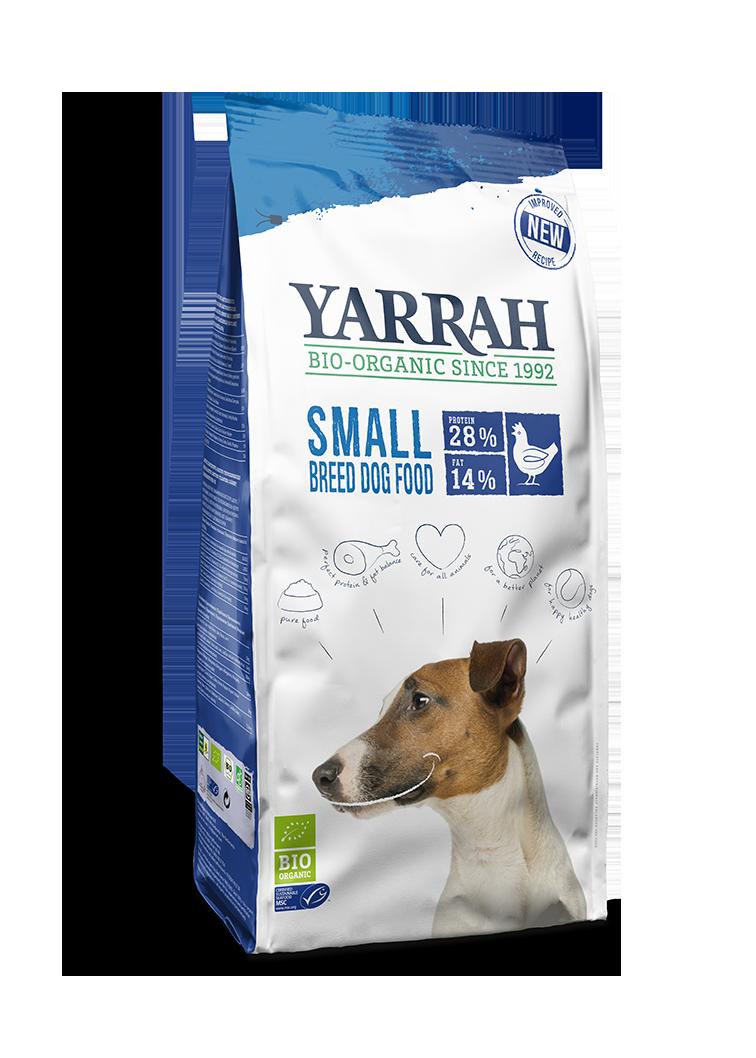 yarrah cão raça pequena
