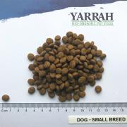 comida para biológica saudável natural cão pequeno