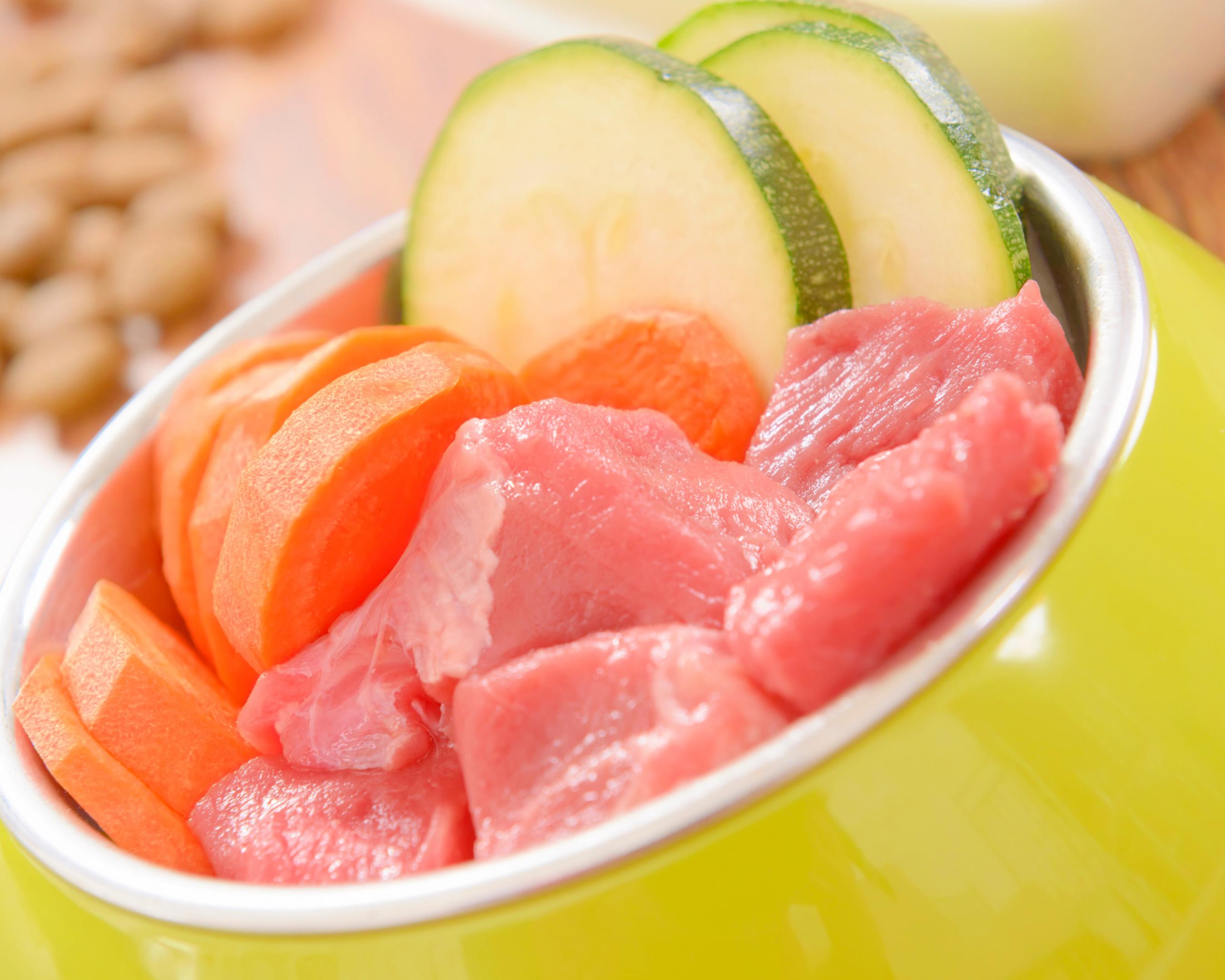 comida natural e saudável para cão