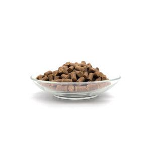 Bellfor Soft Snack Frango O Bellfor Soft Snack Frango é um biscoito 100% natural, saudável e livre de cereais. Com elevado teor de frango e composto apenas por ingredientes orgânicos e aptosaoconsumohumano, são a recompensa saudável e nutritiva, ideal para o seu cão. Processo de fabrico: Prensagem a frio.